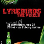 Concert Lyrebirds