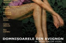 Domnisoarele din Avignon – după Jaime Salom Vidal