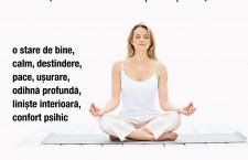 Tehnici de RELAXARE si MEDITATIE ANTI-STRES