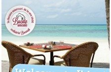 Bucate Unicate – Ibiza