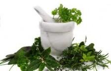 Alimente naturiste care previn imbolnavirile